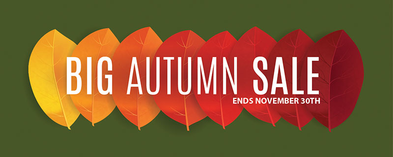 American Cart's Big Autumn Sale!